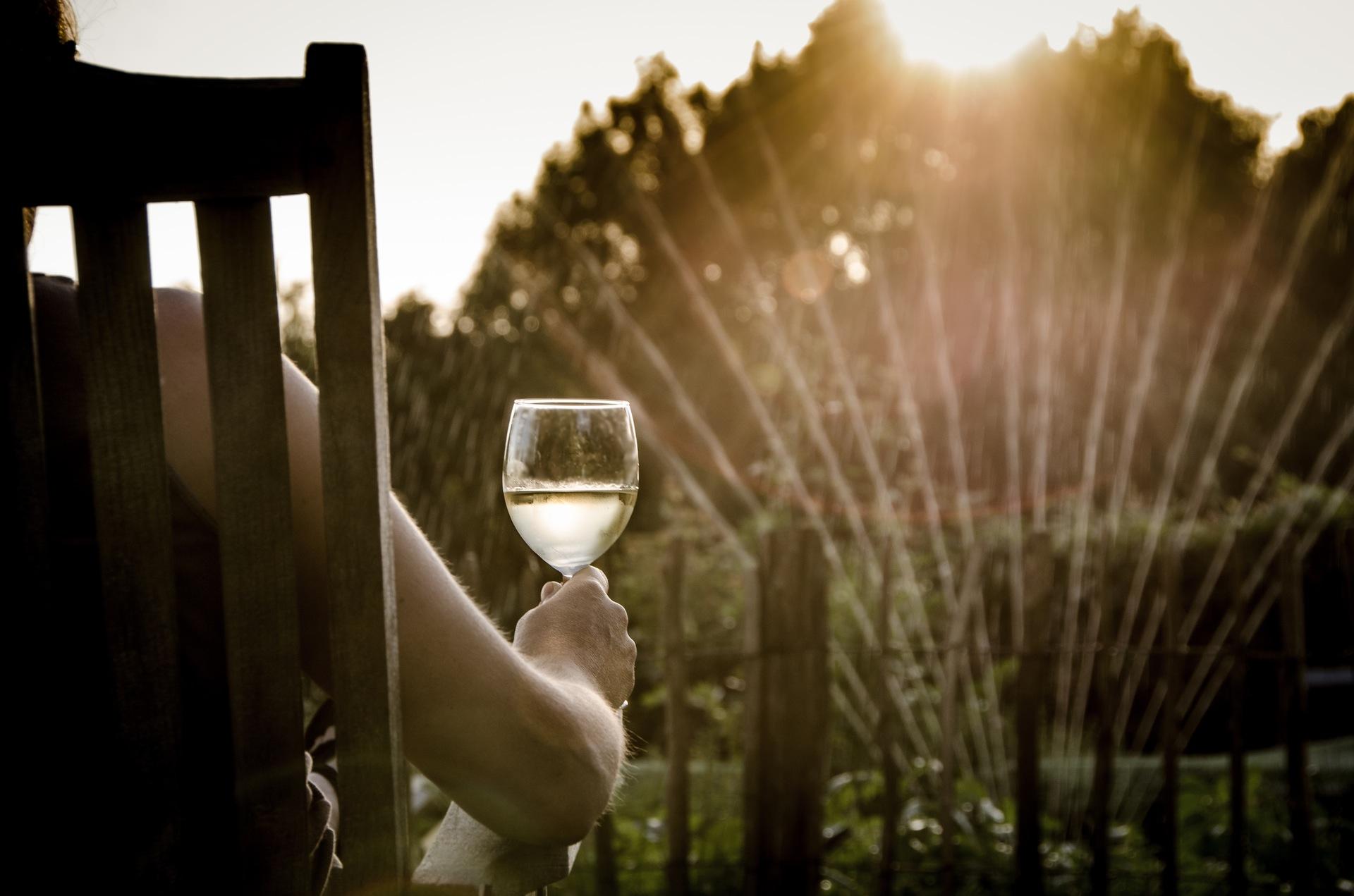 wine garden chair